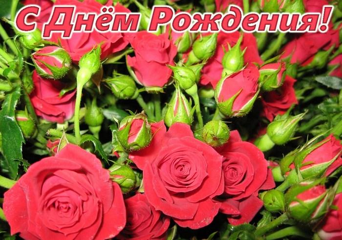 5752045_1464750295_sdnemrozhdeniya1607 (700x491, 118Kb)