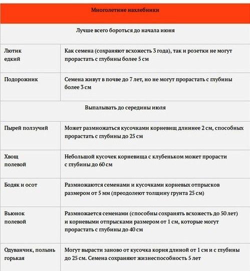 6108242_shpargalka_po_propolke_gryadok2 (499x540, 83Kb)
