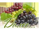 виноград 0 (130x102, 28Kb)
