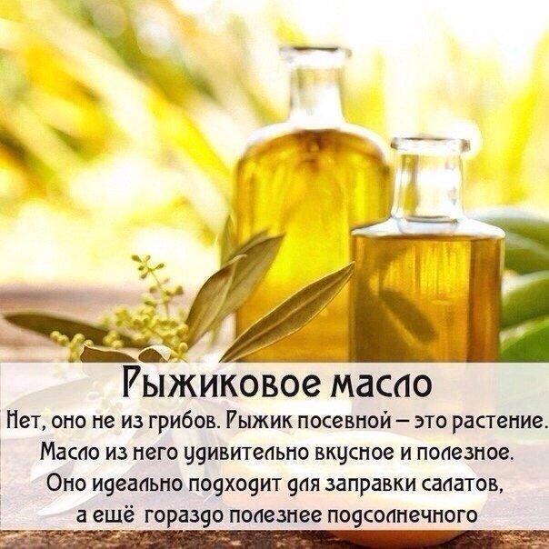 5463572_Polza_masel_dlya_krasoti_i_zdorovya0 (604x604, 82Kb)