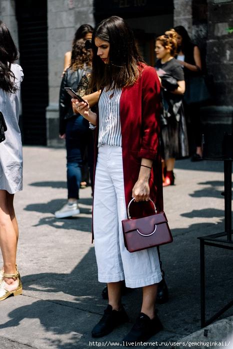 street_style_mbfwmx_fashion_week_mexico_otono_invierno_2017_699066180_1200x1800 (466x700, 236Kb)