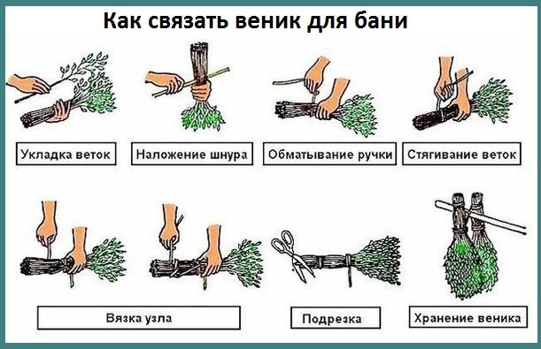 Связать дубовый веник