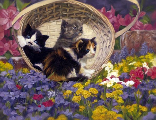 1390415764_lucie-bilodeau-cats-1 (640x492, 376Kb)