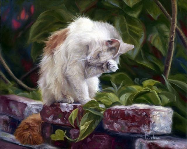 1390415936_lucie-bilodeau-cats-15 (640x509, 323Kb)