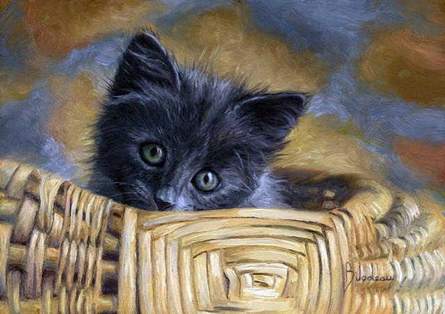 1390415958_lucie-bilodeau-cats-21 (640x451, 337Kb)