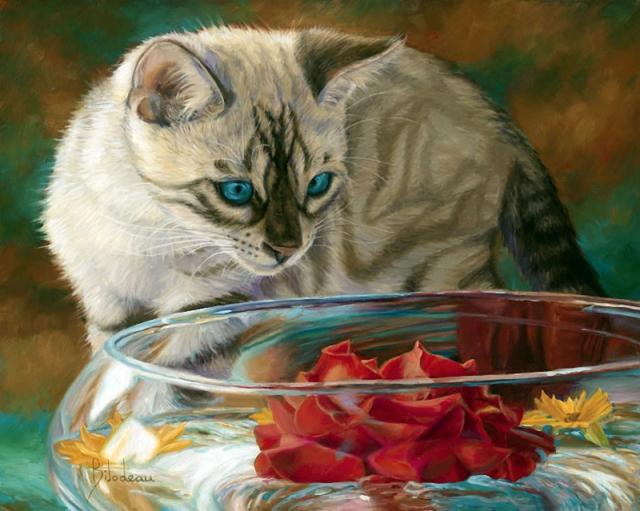 1390415972_lucie-bilodeau-cats-22 (640x511, 349Kb)