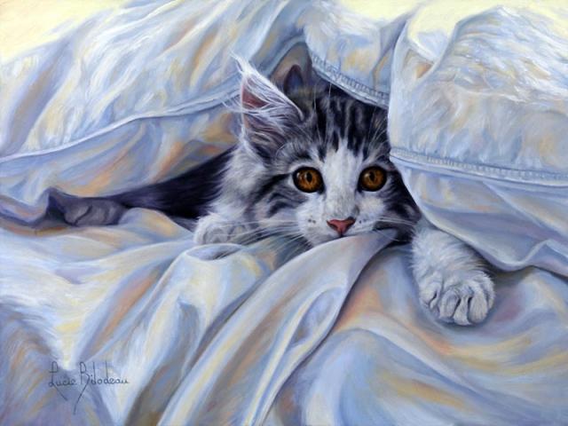 1390416023_lucie-bilodeau-cats-25 (640x480, 309Kb)