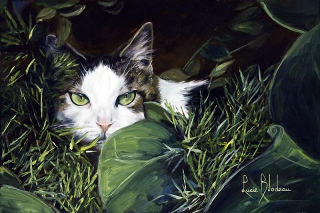 1390416061_lucie-bilodeau-cats-30 (640x426, 311Kb)