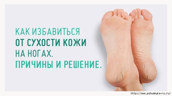 3925073_14388_900 (700x392, 93Kb)