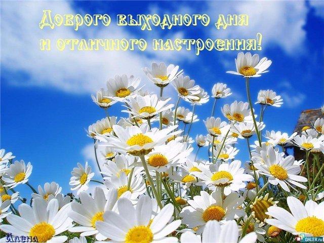 доброго летнего выходного дня и отлмчного настроения (640x480, 86Kb)