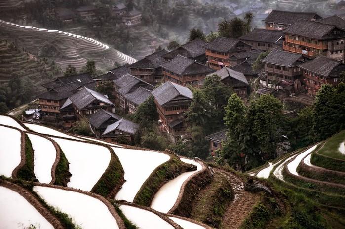 Китайские пейзажи, вода и деревья