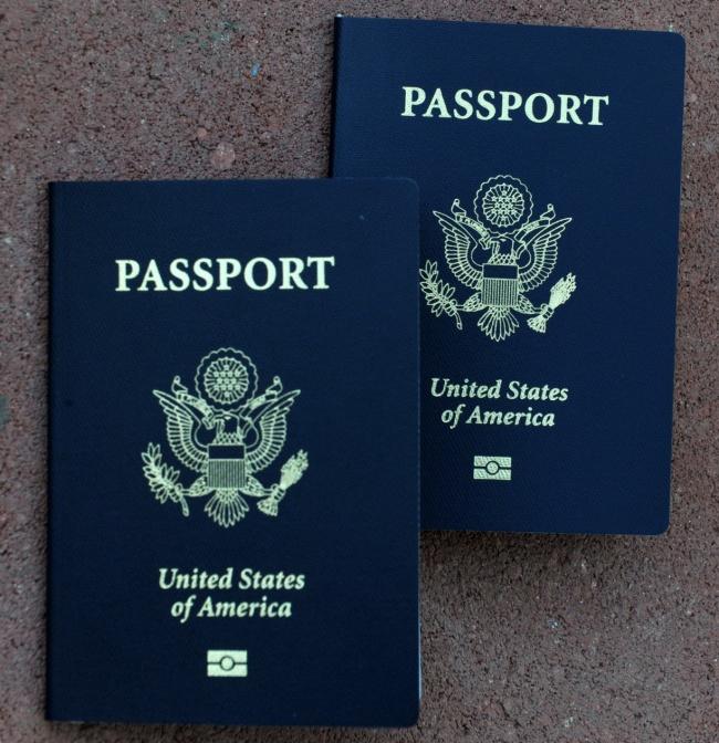 4878453_pasport2 (650x672, 174Kb)