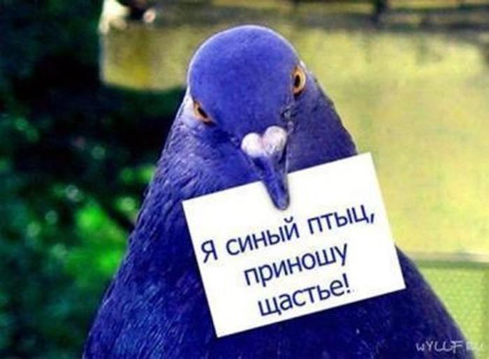 Кто в СССР рассылал «письма счастья»?