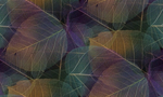 Превью listia-tekstura-fon-tsvet (700x420, 330Kb)