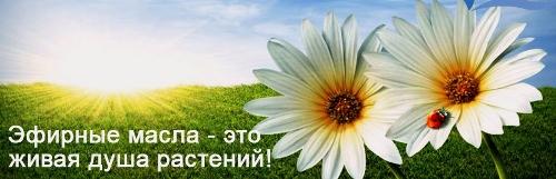 masla_vivasan (500x161, 122Kb)