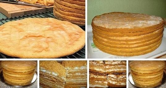 коржи для торта 1 (537x287, 171Kb)