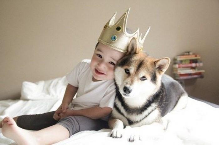 Почему необходимо завести собаку для ребенка