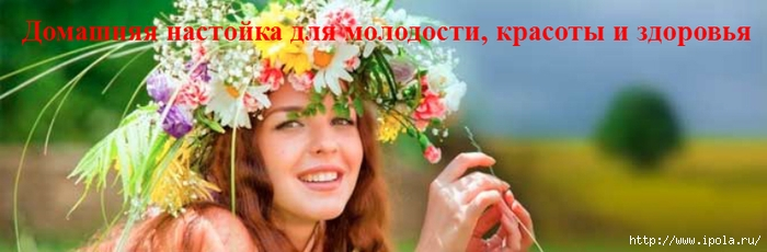 "alt=""Домашняя настойка для молодости, красоты и здоровья""/2835299_Domashnyaya_nastoika_dlya_molodosti_krasoti_i_zdorovya_3_ (700x230, 126Kb)"