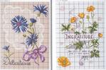 Превью Langage des Fleurs 6 (700x465, 338Kb)