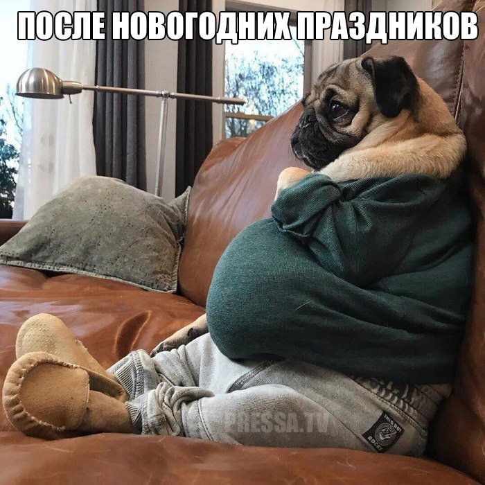 http://img0.liveinternet.ru/images/attach/d/1/139/510/139510360_5671928_1515352888_prikolniekartinkipressa_tv14.jpg