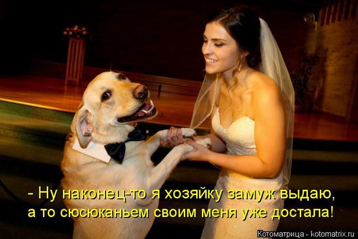 kotomatritsa_f (2) (700x466, 319Kb)