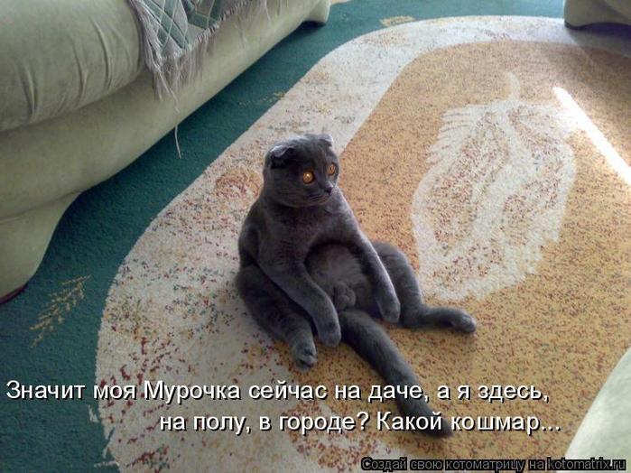kotomatritsa_j (1) (700x524, 406Kb)