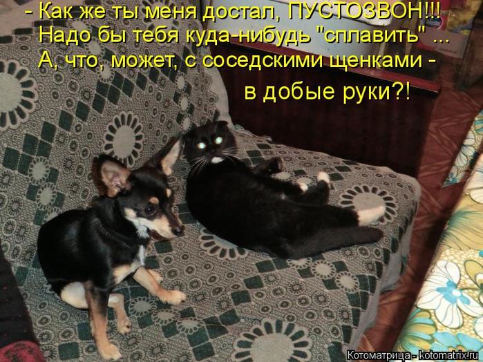 kotomatritsa_A0 (700x524, 449Kb)