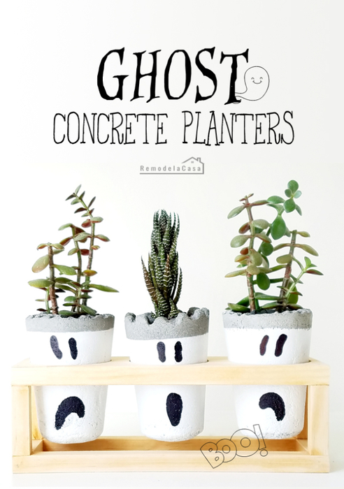 DIY - Ghost Concrete Planters (492x700, 236Kb)