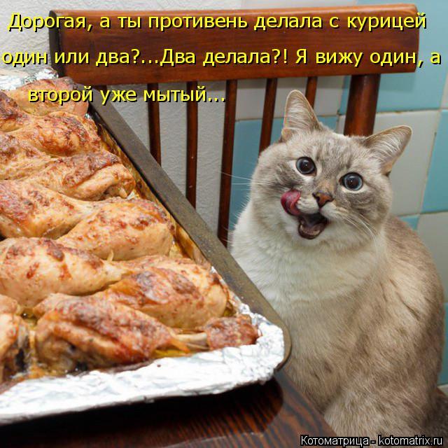 kotomatritsa_C (1) (640x640, 356Kb)