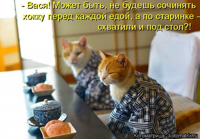 kotomatritsa_Q (637x444, 228Kb)