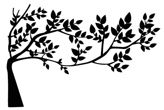 5783248_Tree_And_Leaves_Silhouette254171 (700x471, 61Kb)