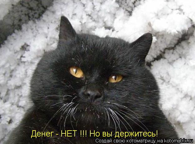 kotomatritsa_7 (626x462, 153Kb)