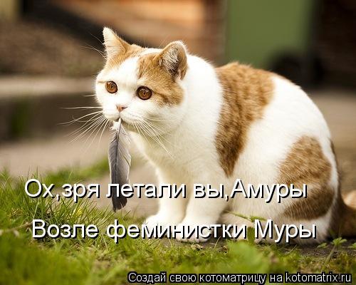 kotomatritsa_W (500x400, 162Kb)