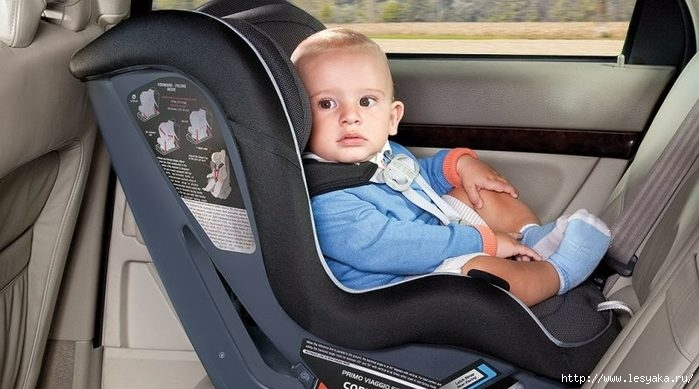 3925073_childcarseats800x445 (700x389, 147Kb)