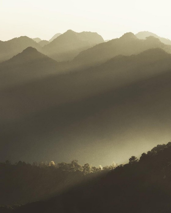 Когда дикая природа вызывает восторг: фотограф Донал Бойд