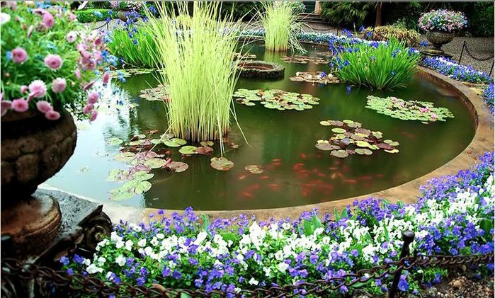 Decorative_ponds_08 (700x421, 103Kb)