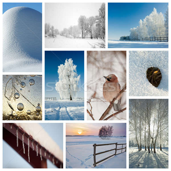 921809_stock-photo-winter-collage (600x600, 170Kb)