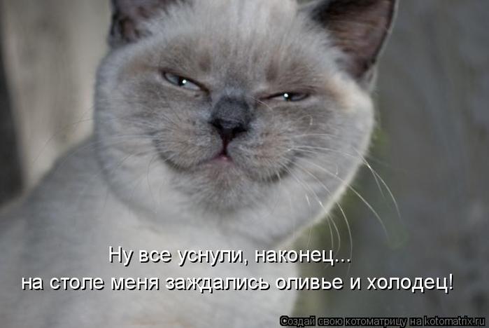 kotomatritsa_-j (700x468, 181Kb)