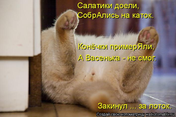 kotomatritsa_q (700x466, 300Kb)