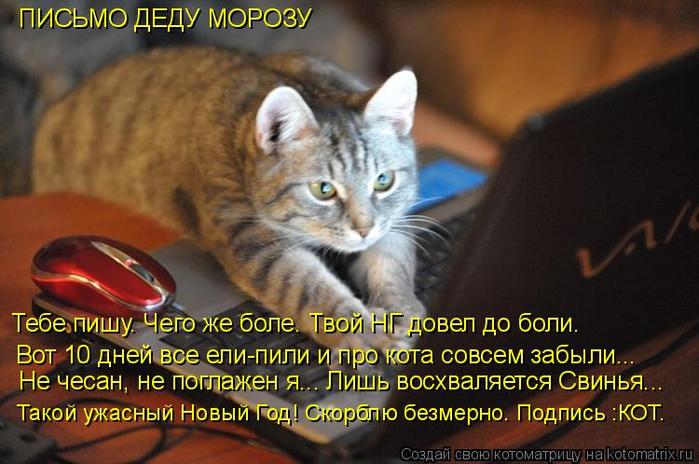 kotomatritsa_c (700x464, 358Kb)