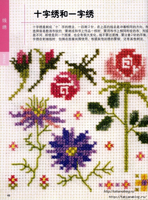 Cros_Stitch_technique_book.page48 copy (521x700, 472Kb)