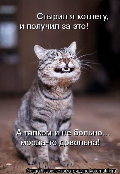 kotomatritsa_5 (410x591, 140Kb)