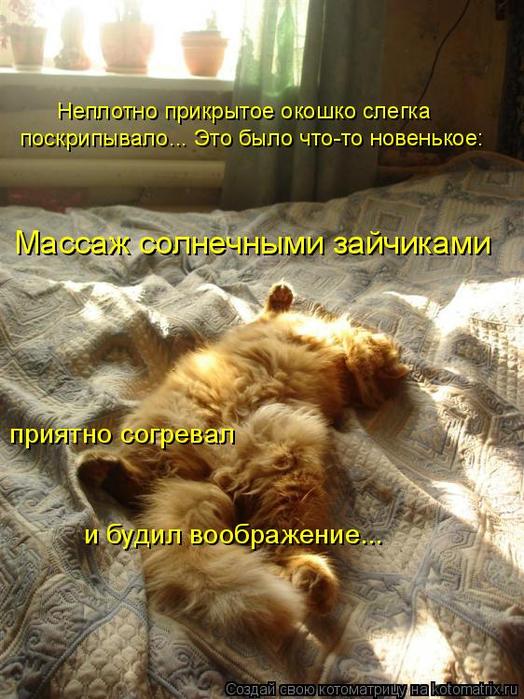 kotomatritsa_7 (524x700, 429Kb)