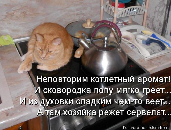 kotomatritsa_R (700x532, 341Kb)