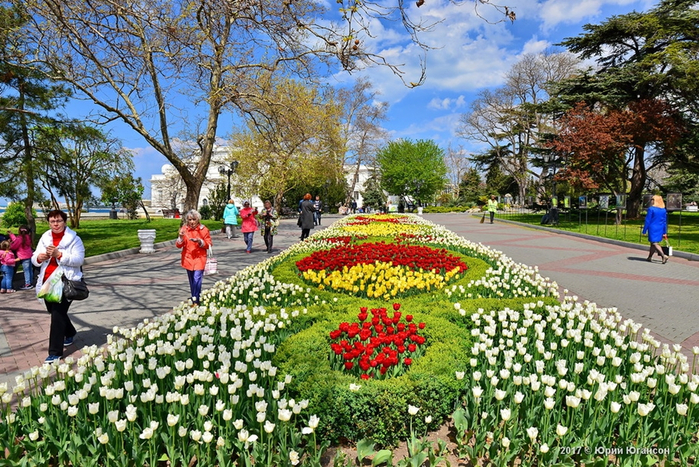 Sevastopol-drowned-in-tulips-06 (700x467, 565Kb)