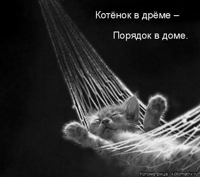 kotomatritsa_4 (700x617, 112Kb)
