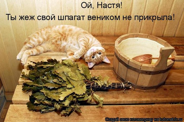 kotomatritsa_-v (700x465, 381Kb)