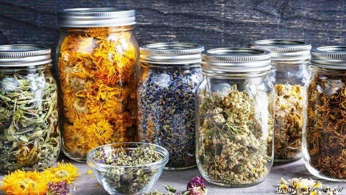9 трав и три супер-рецепта для лечения поджелудочной