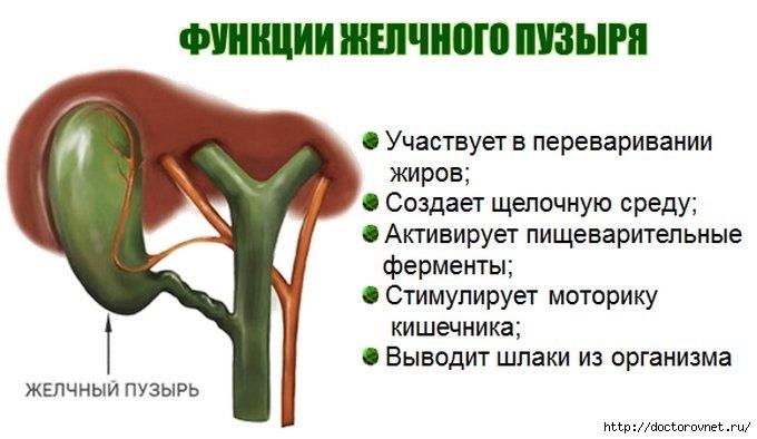 5239983_jelchnii_pyzir (680x394, 129Kb)