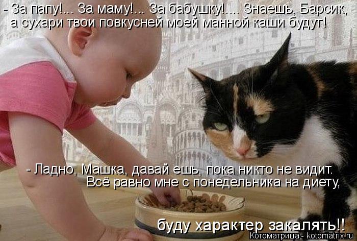 kotomatritsa_M (700x472, 249Kb)